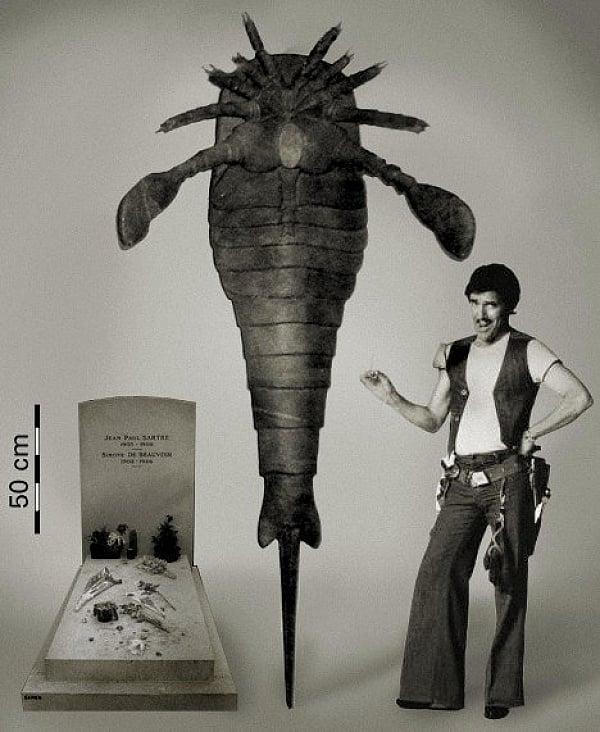 un fósil gigante al lado de un hombre