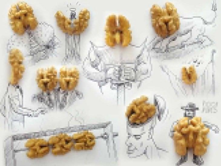 dibujo con nueces del artista victor nunes