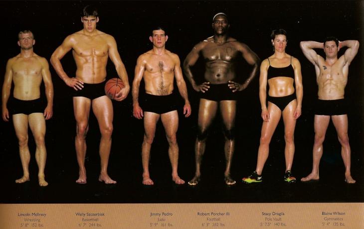 cuerpo según diferentes disciplinas deportivas (9)