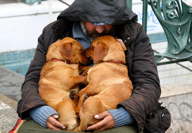 el perro el mejor amigo y no busca interéses (10)