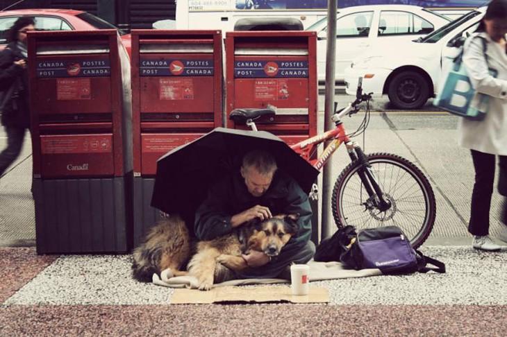 el perro el mejor amigo y no busca interéses (13)