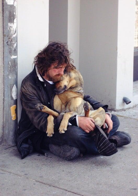el perro el mejor amigo y no busca interéses (2)