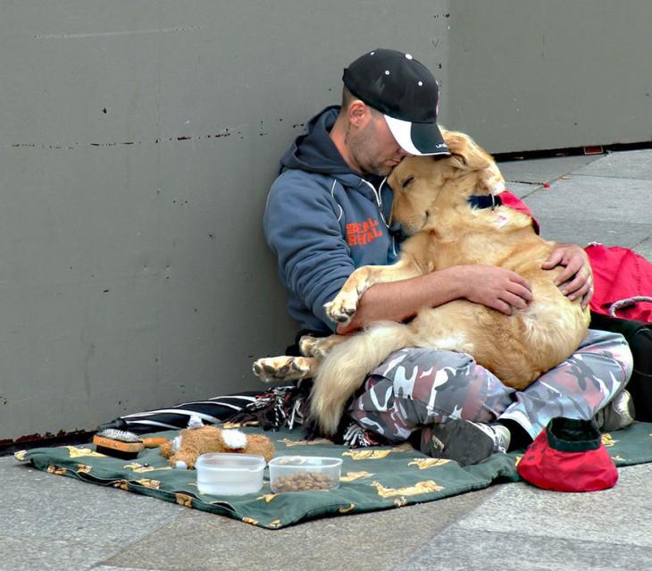 el perro el mejor amigo y no busca interéses (3)