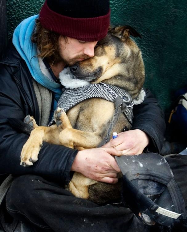 el perro el mejor amigo y no busca interéses (4)
