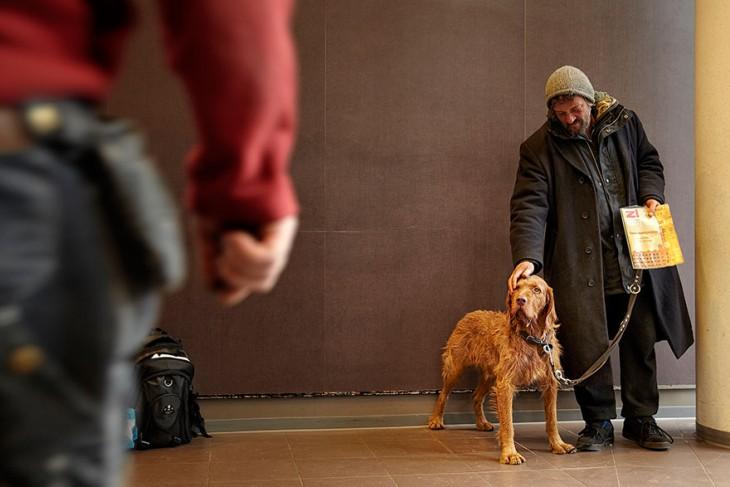 el perro el mejor amigo y no busca interéses (6)