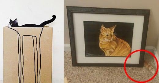 gatos que ganarian en el juego de las escondidas
