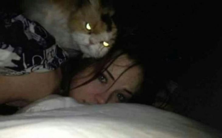 gato flota sobre ti mientras duermes