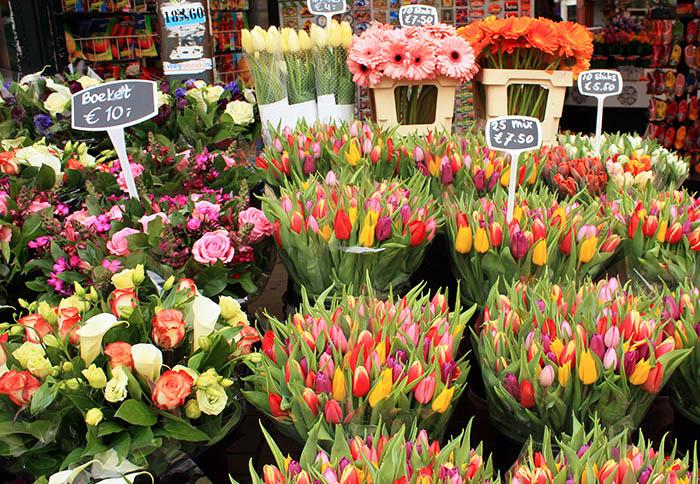 flores en canastas con precio