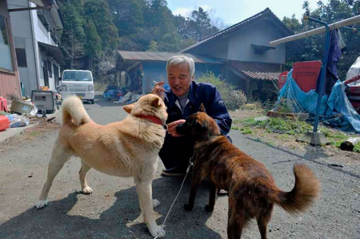 japones con perros de la calle en fukushima