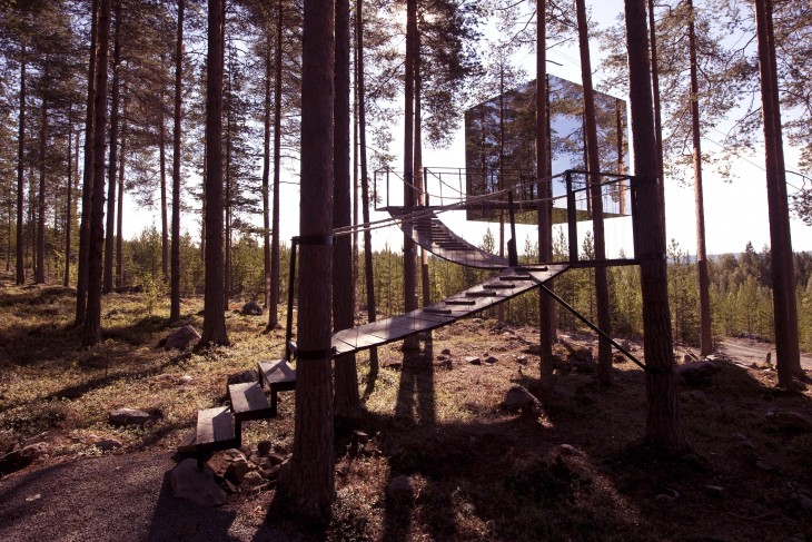 gran cubo de espejos flotando en medio del bosque