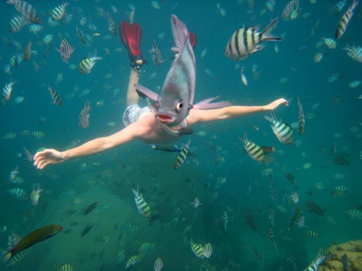 Imagen tomada debajo del mar con peces alrededor de un buzo que frente a él tiene un pez que parece ser su cabeza