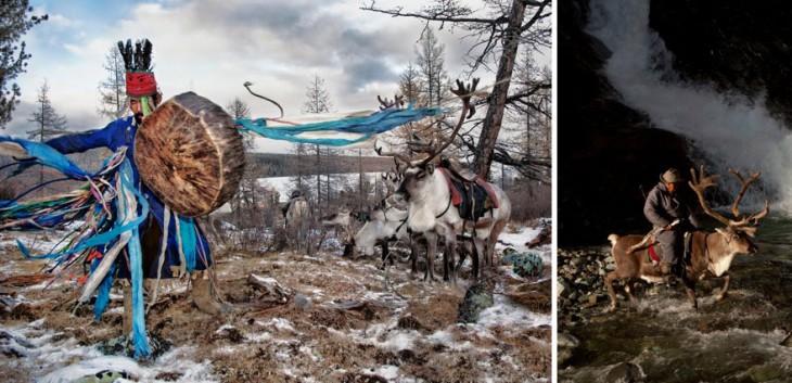 renos de la tribus mongoles