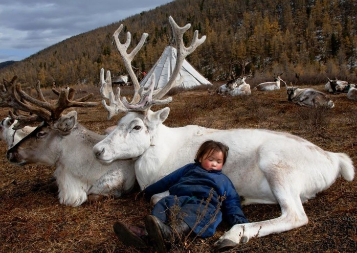 nina mongol con sus renos
