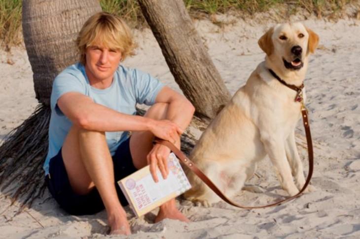 hombre sentado en la arena al lado su perrito