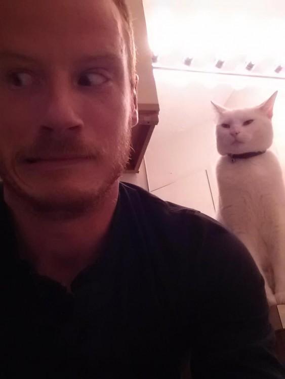 gato detras de el hombro de un hombre