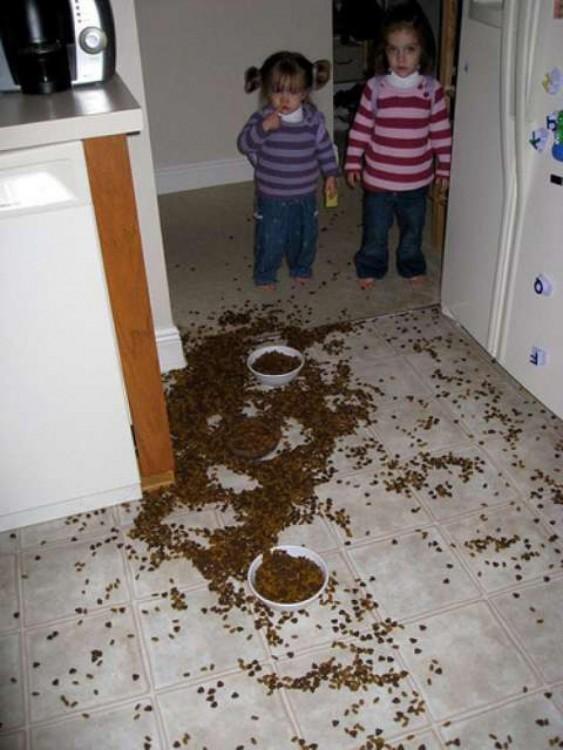 niñas con la comida del perro regada por la cocina