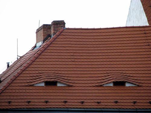 tejado de una casa con ventanas que forman unos ojos pequeños