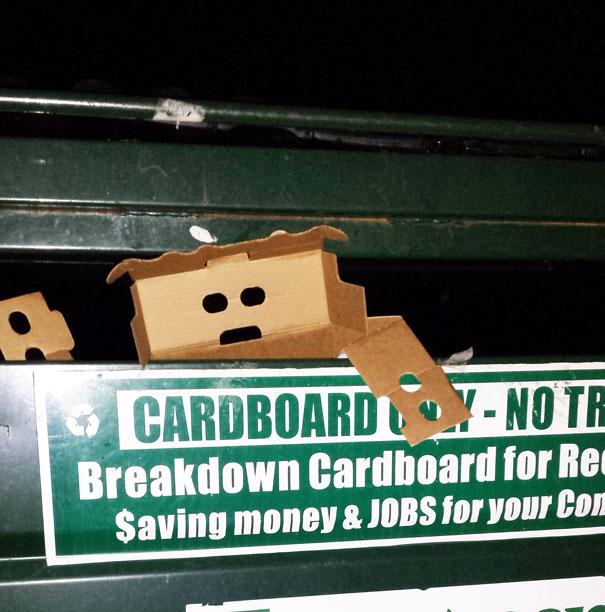 caja tratando de escapar de un contenedor de basura