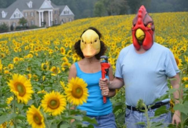 personas en un campo de girasoles usando una mascara de pato y gallo sosteniendo una llave