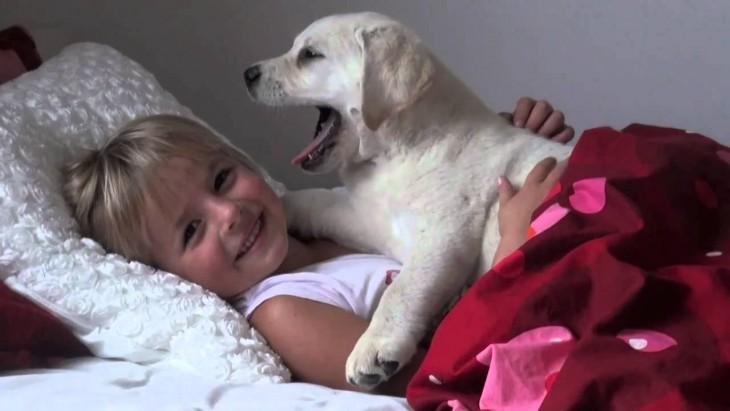 niño acostado en su cama con su perrito blanco
