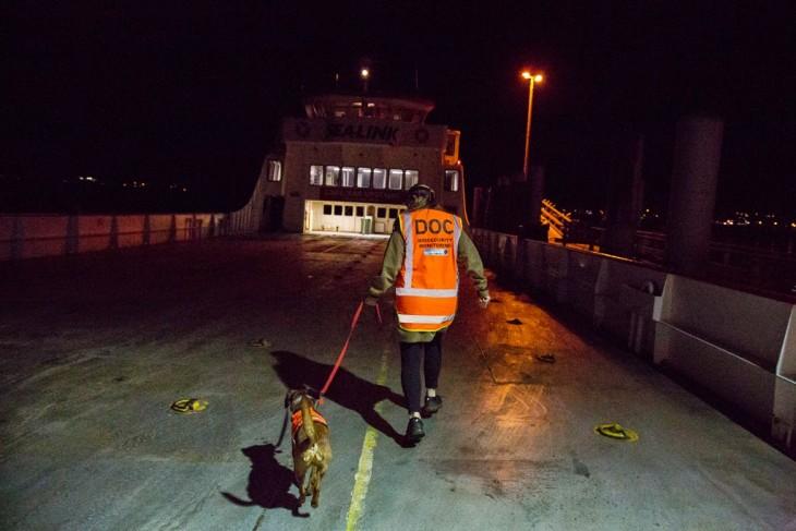 policia con un perro de bíoseguridad en un barco