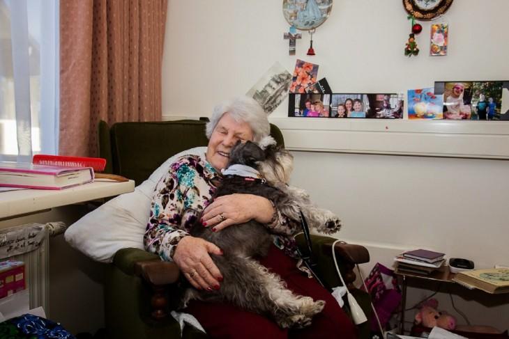 Perros de compañía y terapia