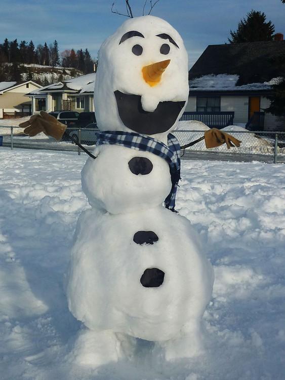 muñieco de nieve divertido FROZEN