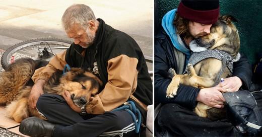prueba de que los perros te amaran sin importar el dinero que tengas