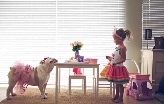 bulldog blanco con tutu y antenitas jugando al te con una niñita