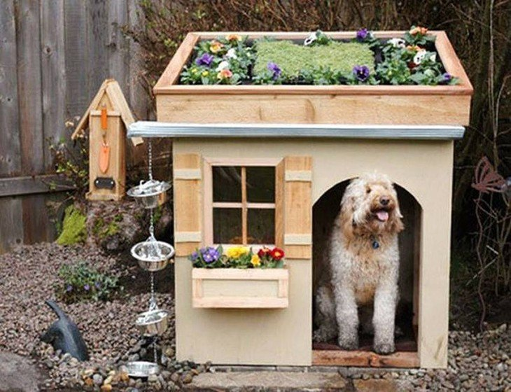 casa para perro mediano con jardinera en el techo