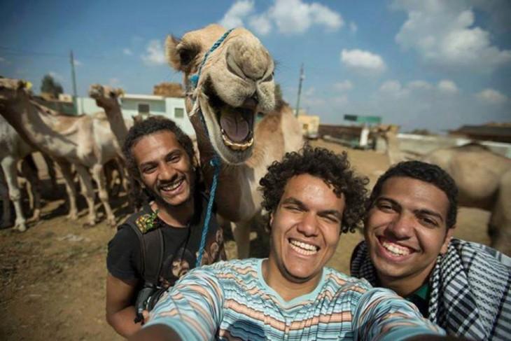 Camello feliz de Hossam Atef y sus amigos