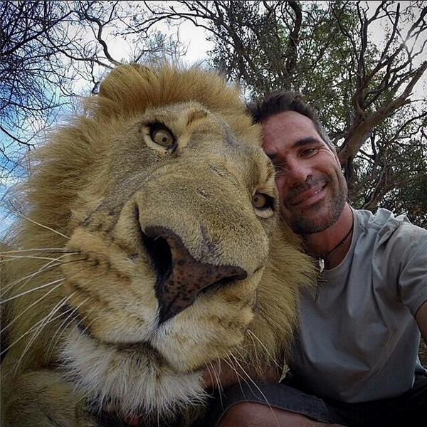 selfie con leon con su cara de ternura y muy junto a la camara