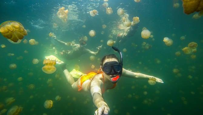 famosa instagram katie elber nadando con medusas