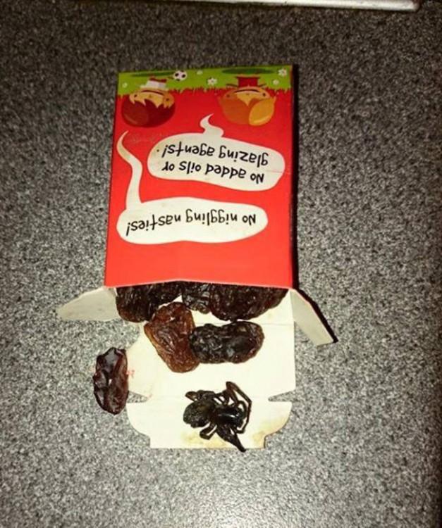 caja de pasas con una araña adentro