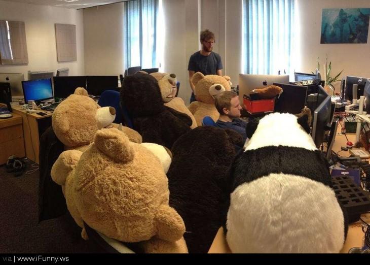 muchacho en la computadora rodeado de osos de peluche