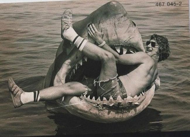 cabeza de tiburon donde steven figurp que se lo comian