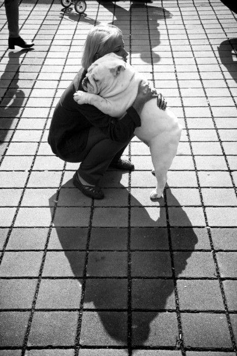 bulldog abrazando a su mamá humano