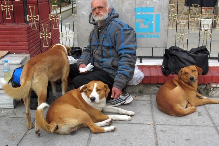hombre de la calle le da de comer a perros