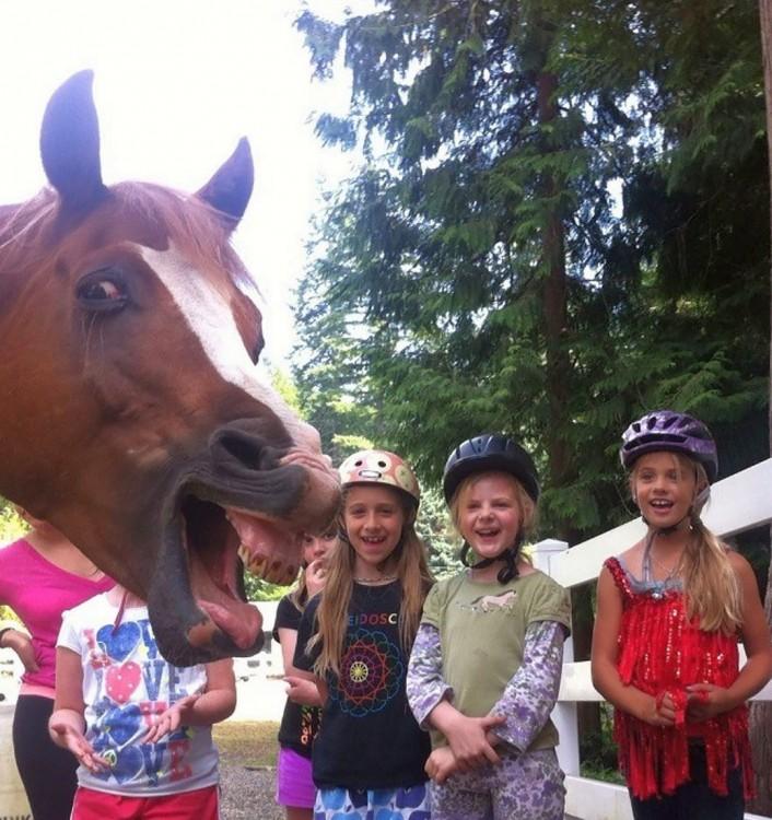 caballo muestra los dientes a nenas