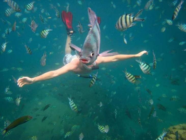 pez parece la cabeza de una mujer