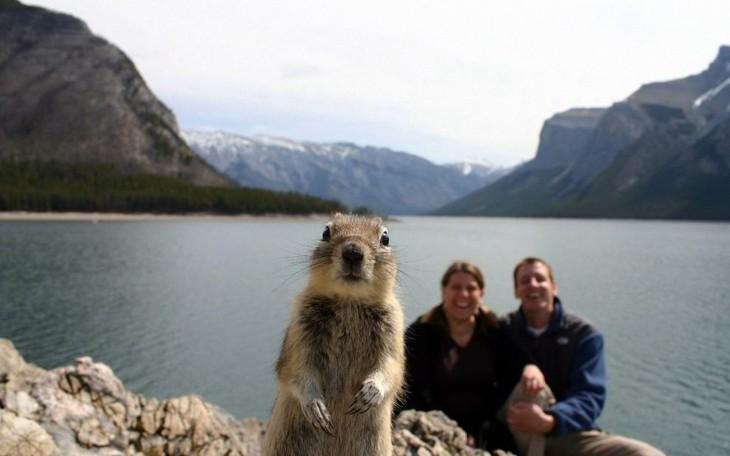 una marmota con dos personas atras