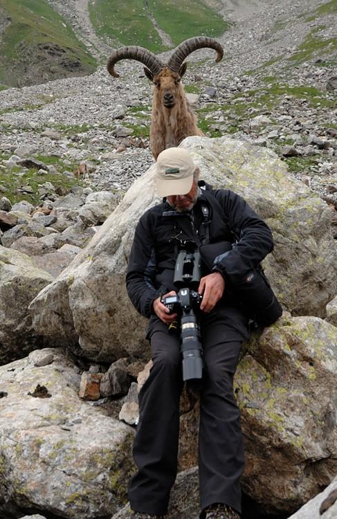 fotografo con un bighorn atras