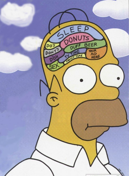Cabeza de Homero con muchas cosas en su cerebro