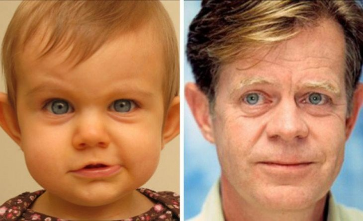 Bebé parecido a William H. Macy