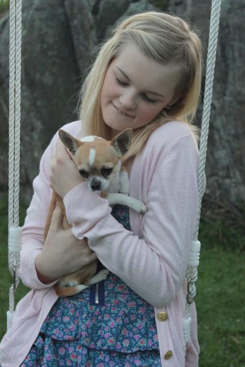 Chica con un perro chihuahua