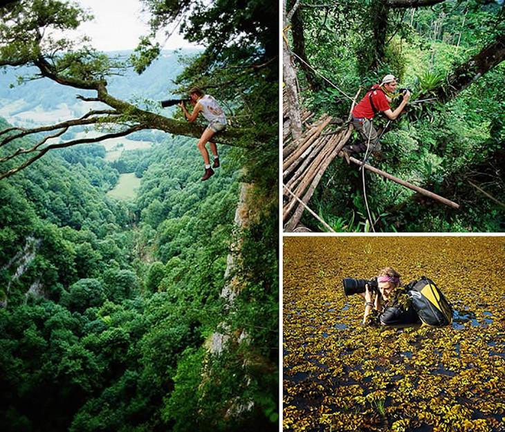 Fotógrafos sobre árboles y en el agua