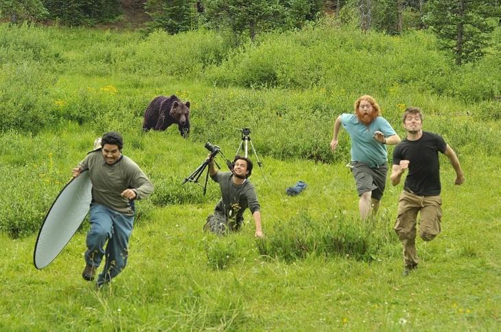 Fotógrafos perseguidos por un oso