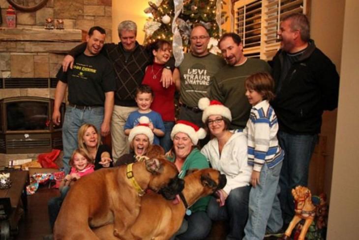 Perros apareándose en foto familiar