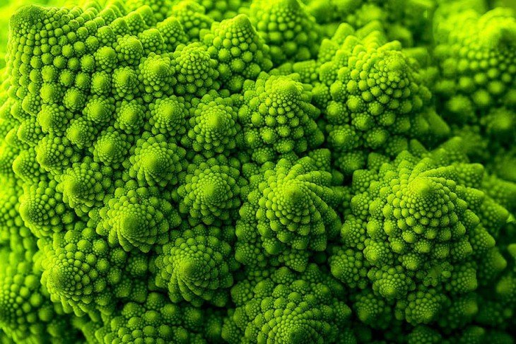 Geometría de un brócoli