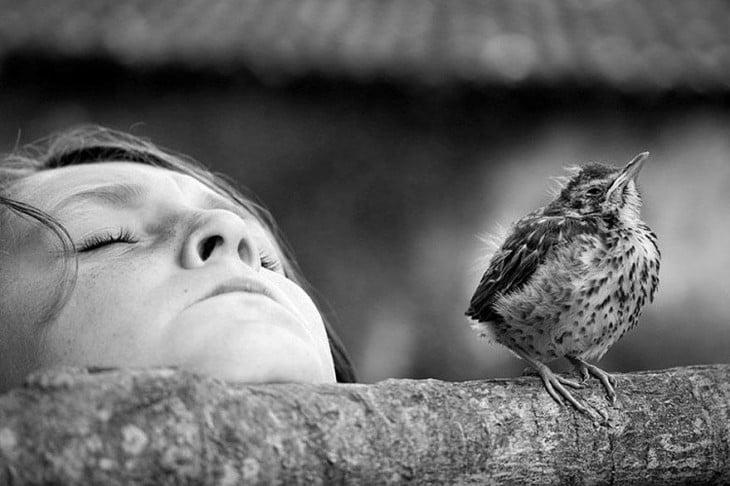 Cara de una niña volteando hacia arriba a un costado de un pájaro